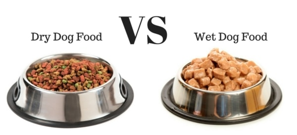 Dog Food: Wet vs Dry